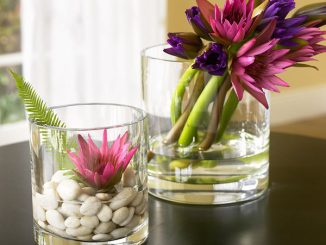 Glass_Flowers