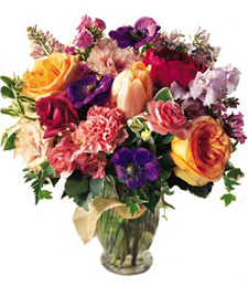 Birthday_Flowers_of_Europe
