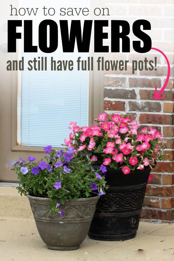 flowers_savemoney