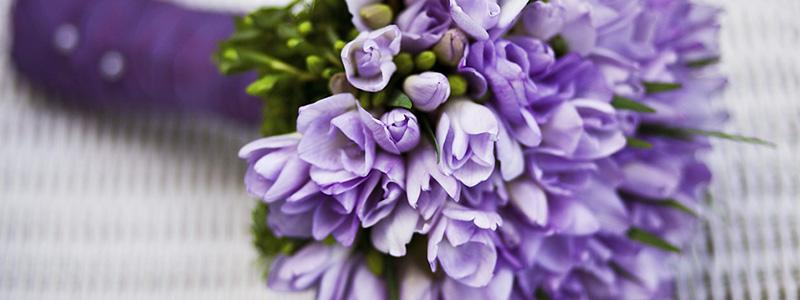 puppey_flower