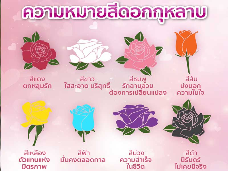 Meaning-of-roses